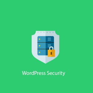 wordpress security 300x300 - Ezyweb Defender